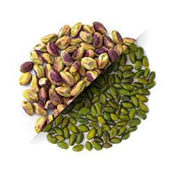 iran dried fruit exporter and wholesaler